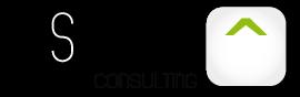 Logo Società di Consulenza e formazione aziendale Ascoli Piceno Resoluta Consulting